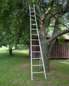 Open Top Orchard Ladder